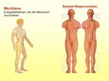 Verlauf des Magenmeridians